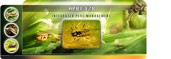 APBI-428